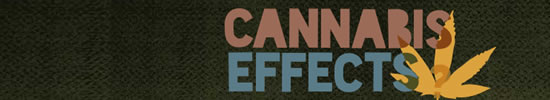 cannabiseffects.org